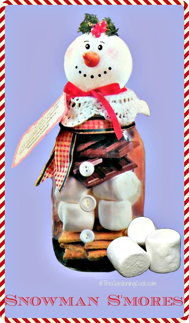Snowman Smores DIY project