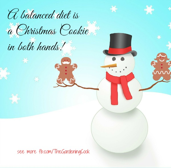 A balanced Diet is a Christmas cookie in both hands
