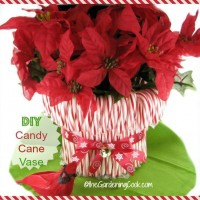 Super easy DIY Candy Cane vase. See my step by step tutorial: thegardeningcook.com/