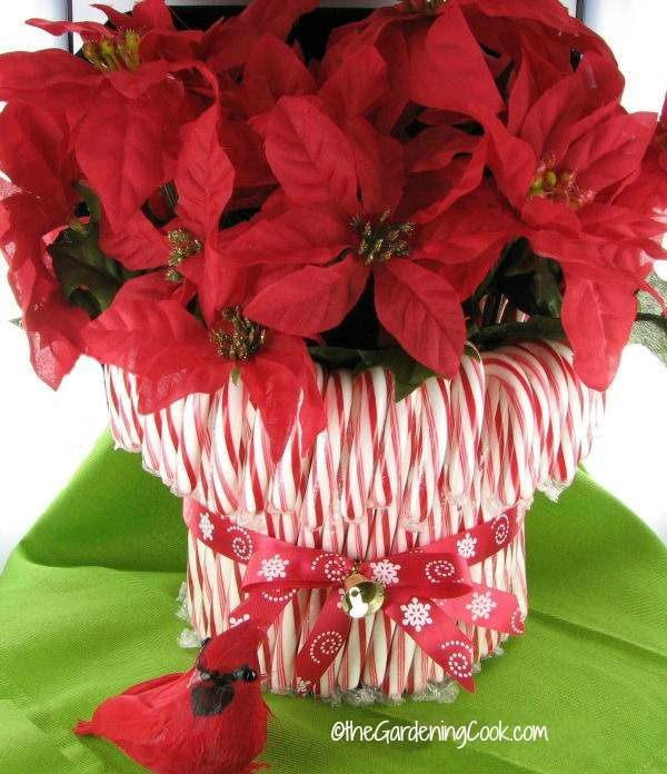 Candy Cane vase is an easy holiday decor project