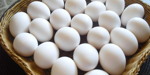 Eggs can be frozen either whole or cracked