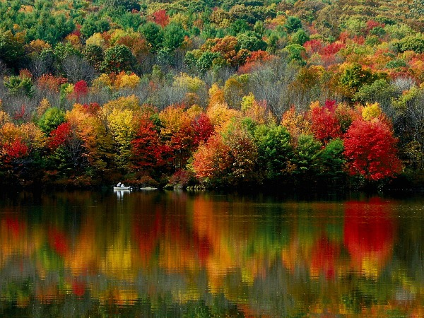 Nature at its best. The colors of fall