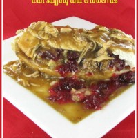 Hot turkey sandwich with cranberries and stuffing