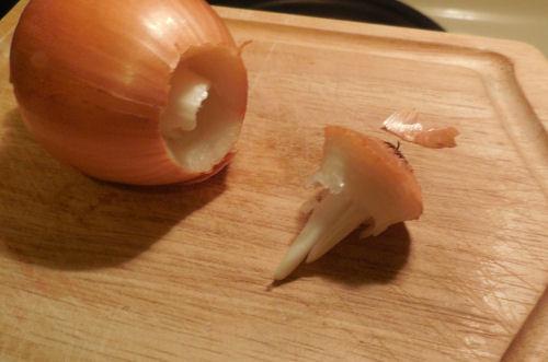 bulb of the onion