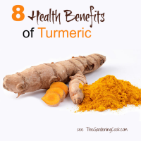 8 health benefits of turmeric and 10 ways to add it to your diet.