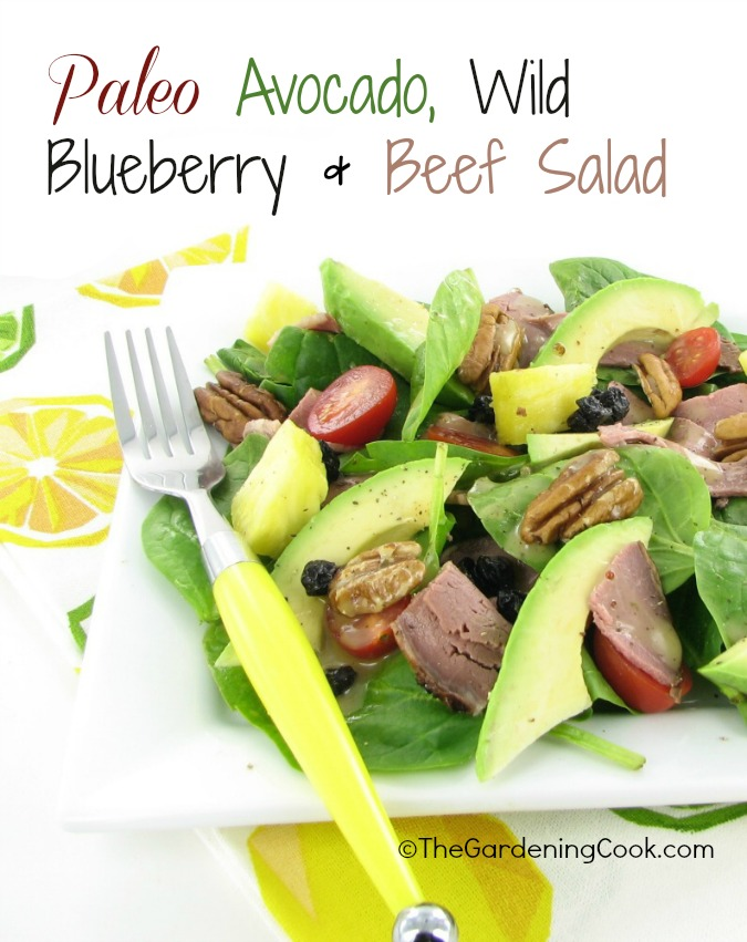 Paleo Beef Avocado Blueberry Salad with maple Mustard dressing.