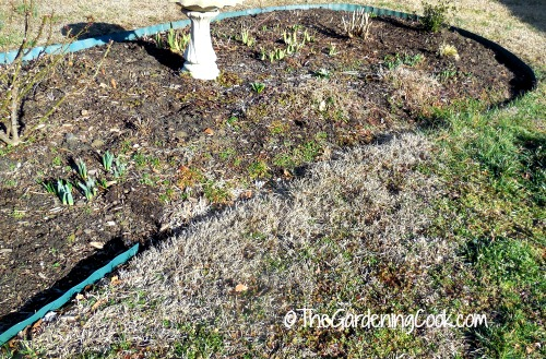 Edging curbs weed growth