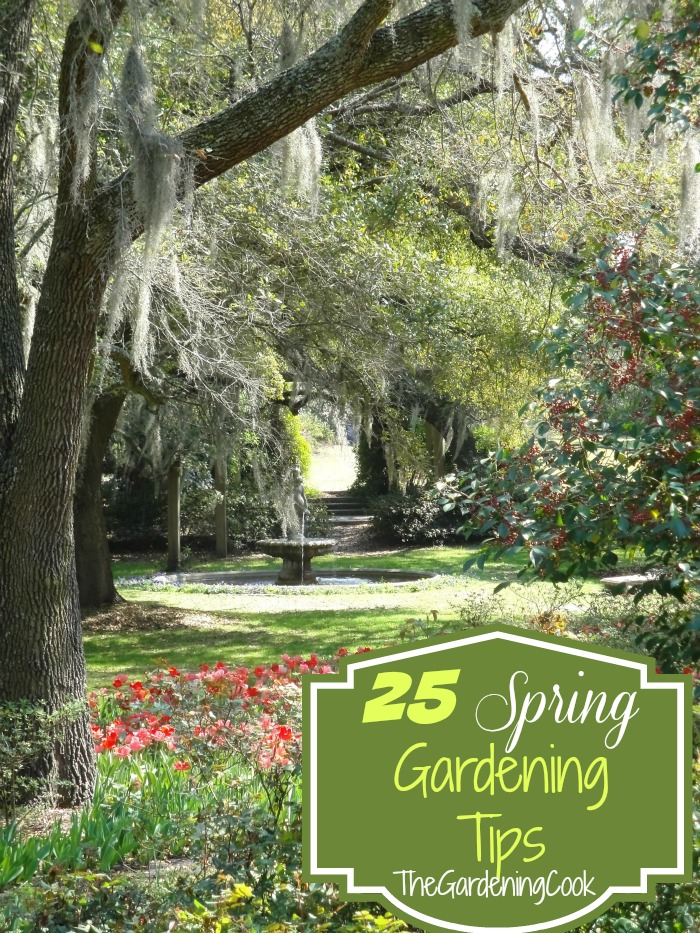25 Tips To Get Your Garden Ready For Spring
