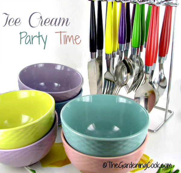 Ice cream party time with Francois et Mimi Ice Cream Bowls