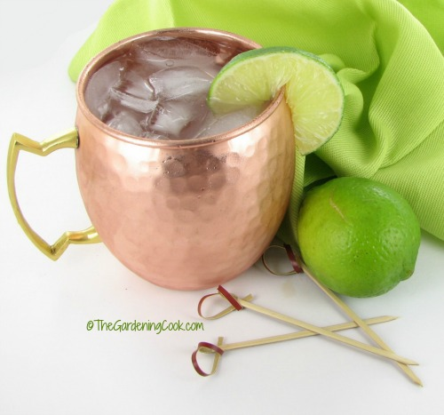 Moscow Mule makes a perfect party starter for a girls' night in