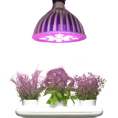 Grow lights are a great aid in propagating plants
