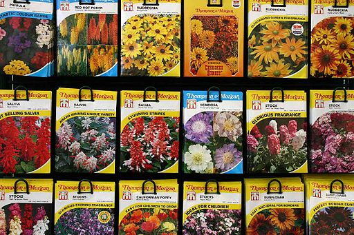 seed packages