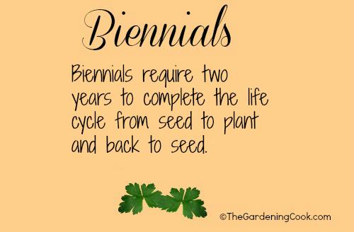 Fresh Herbs - Annual  Biennial Or Perennial