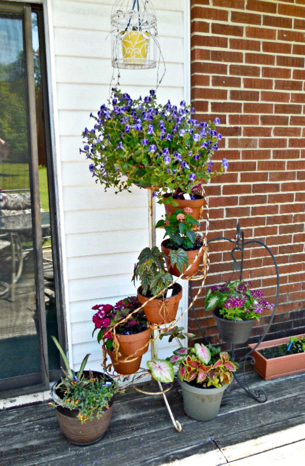 Flowering Plants On A Step Ladder Plant Stand