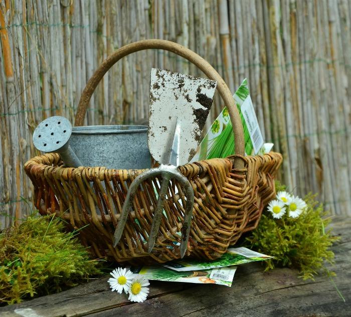 Basket with garden tools