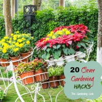 20 Clever Gardening Hacks