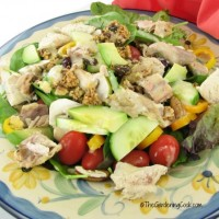 Paleo Ginger Cilantro chicken salad
