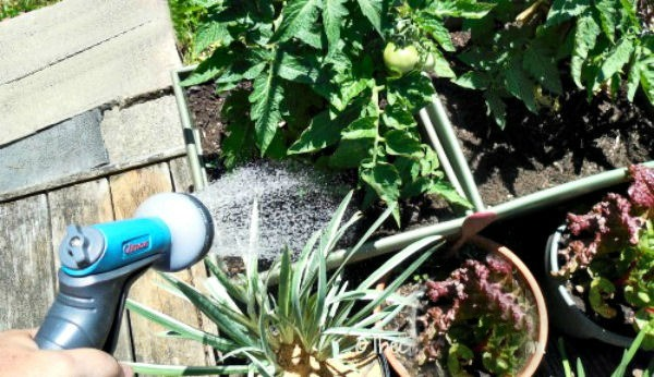 Watering The Garden On A Deck Is Easy
