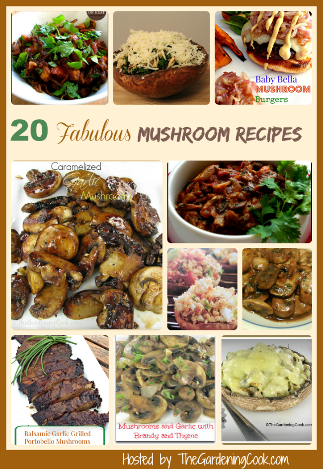 20 Delicious Mushroom recipes from https://thegardeningcook.com/9-tips-for-cooking-with-mushrooms/#mushroomrecipes