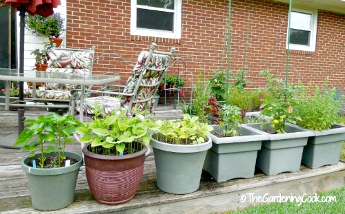 Awesome Vegetable Garden On A Deck