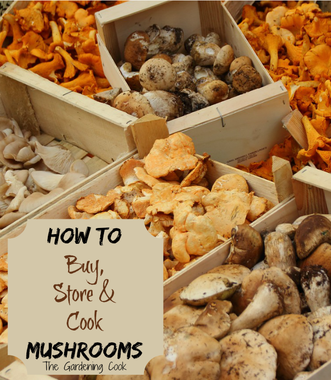 8 Tips for Cooking with Mushrooms - thegardeningcook.com/tips-for-cooking-with-mushrooms
