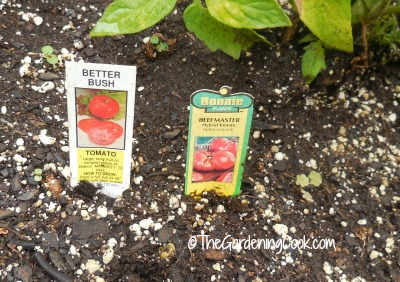 Learn about your tomato variety