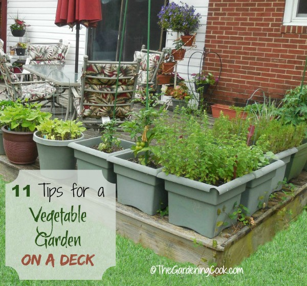 11 tips to grow a ve able garden on a deck