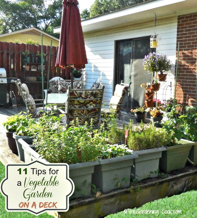 11 Tips For Deck Vegetable Garden Planters