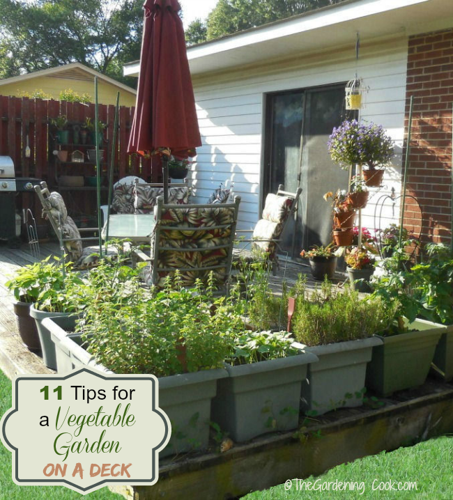 11 tips to Grow a Vegetable Garden on a deck from thegardeningcook.com/vegetable-garden-on-a-deck