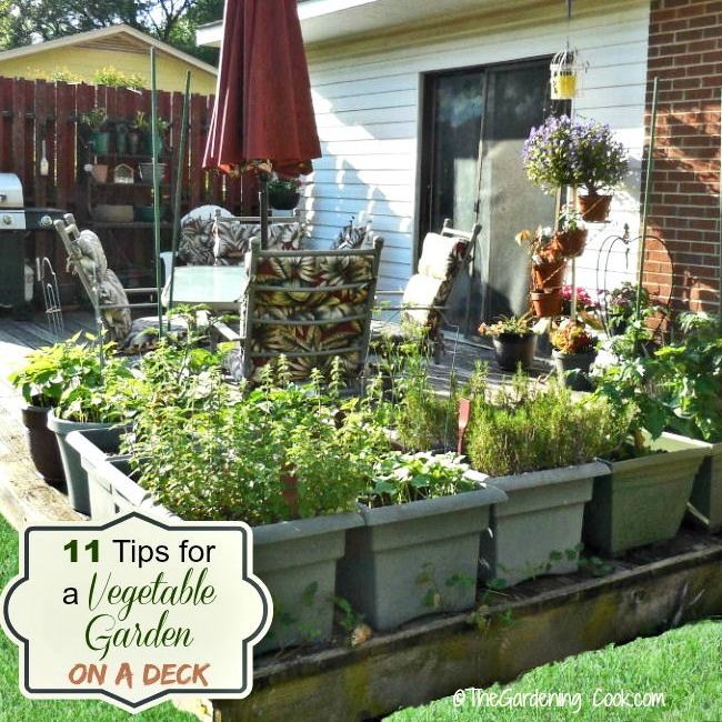 How to Grow a Vegetable Garden on a Deck