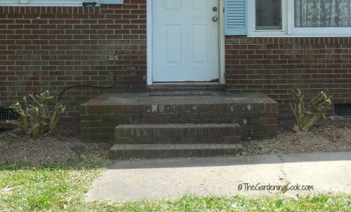 Cutting down overgrown shrubs adds space to the front step