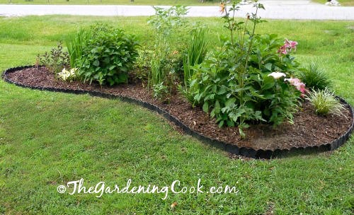 Trim the edges for great curb appeal