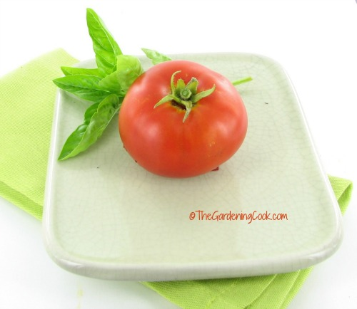 Tomato and fresh basil