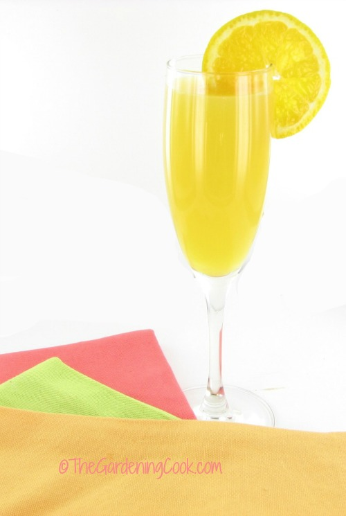 Vodka Mimosa cocktail