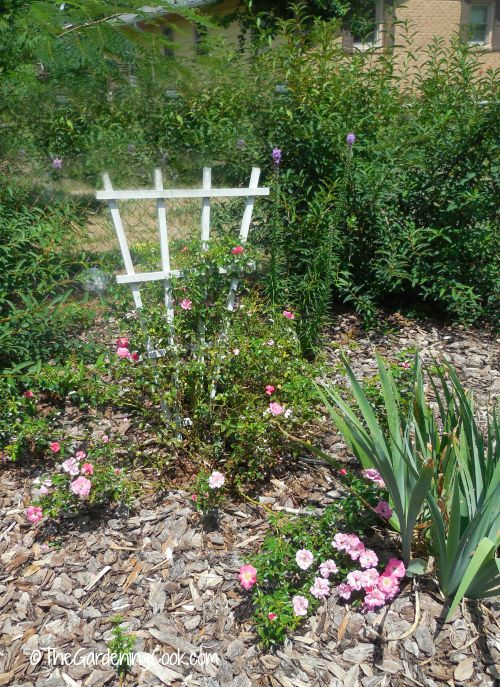 A trellis adds to a cottage garden