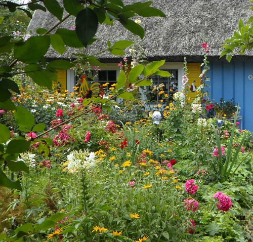 Vary the height of plants in a cottage garden