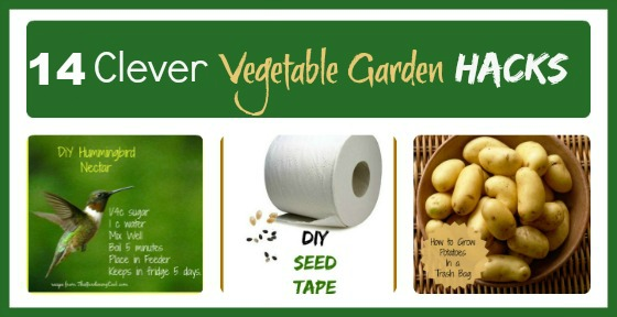 vegetable garden hacks 14 fun and clever gardening ideas - Garden Hacks