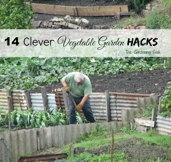 14 Vegetable Garden Hacks