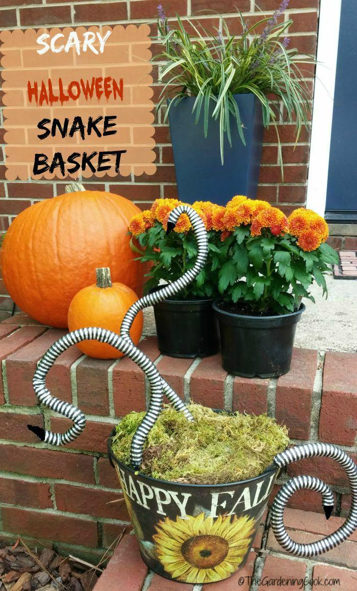 scary snake basket