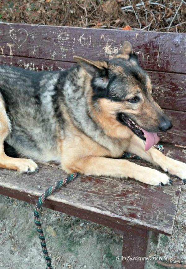 Ashleigh on a bench