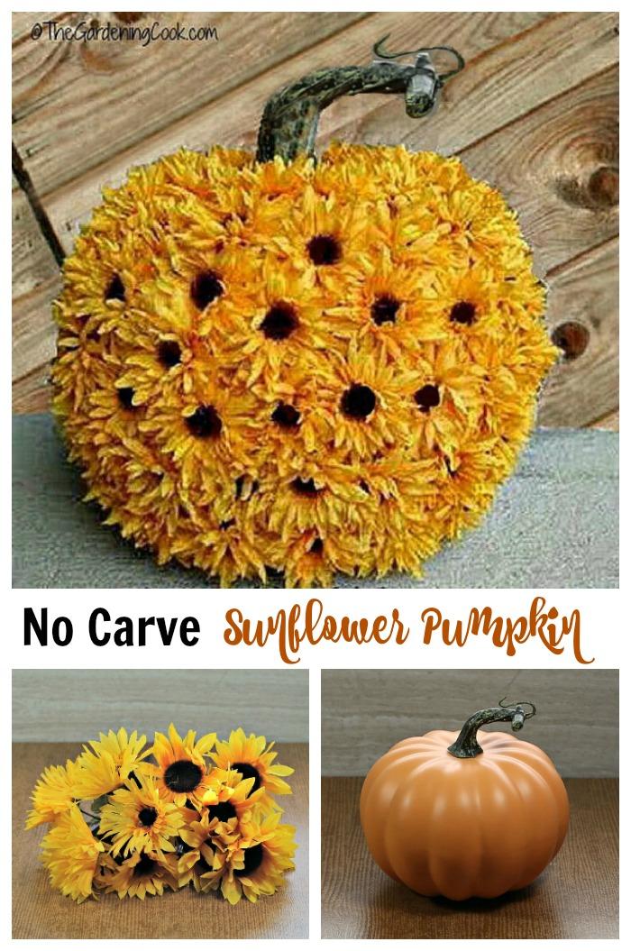 "Pumpkin, sunflower collage with words reading ""no carve sunflower punpkin."""