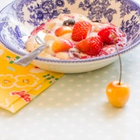 Vanilla custard with homemade fruit sauce. Sometimes simple is the best taste!