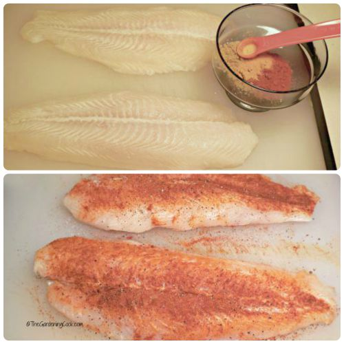 Swai fish with Indian spice rub
