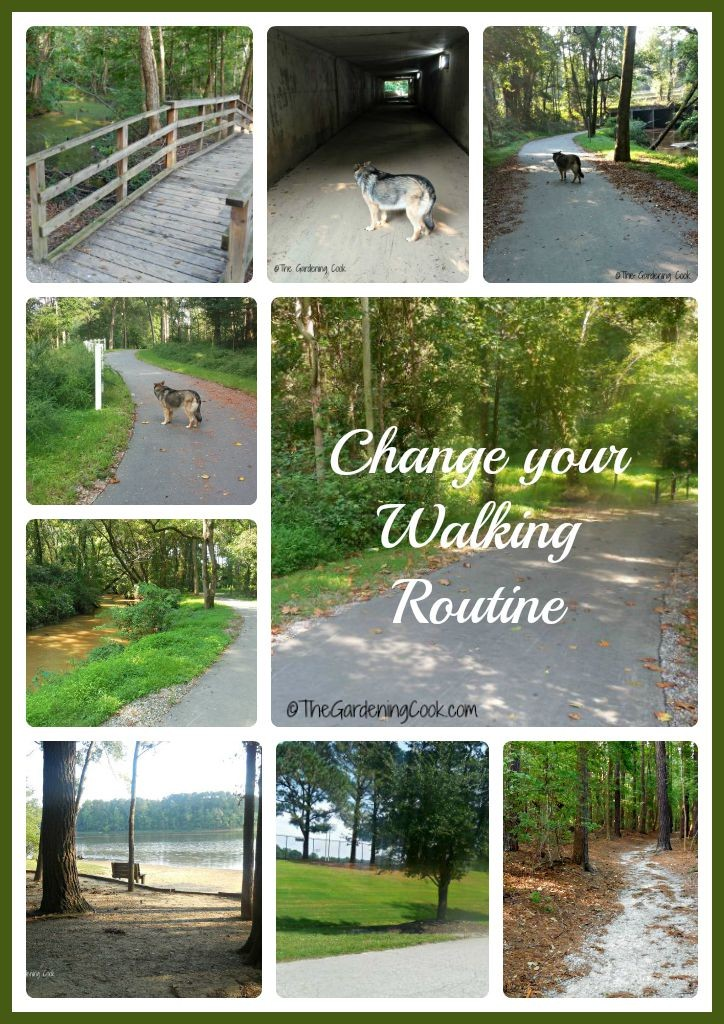 Change your walking routine