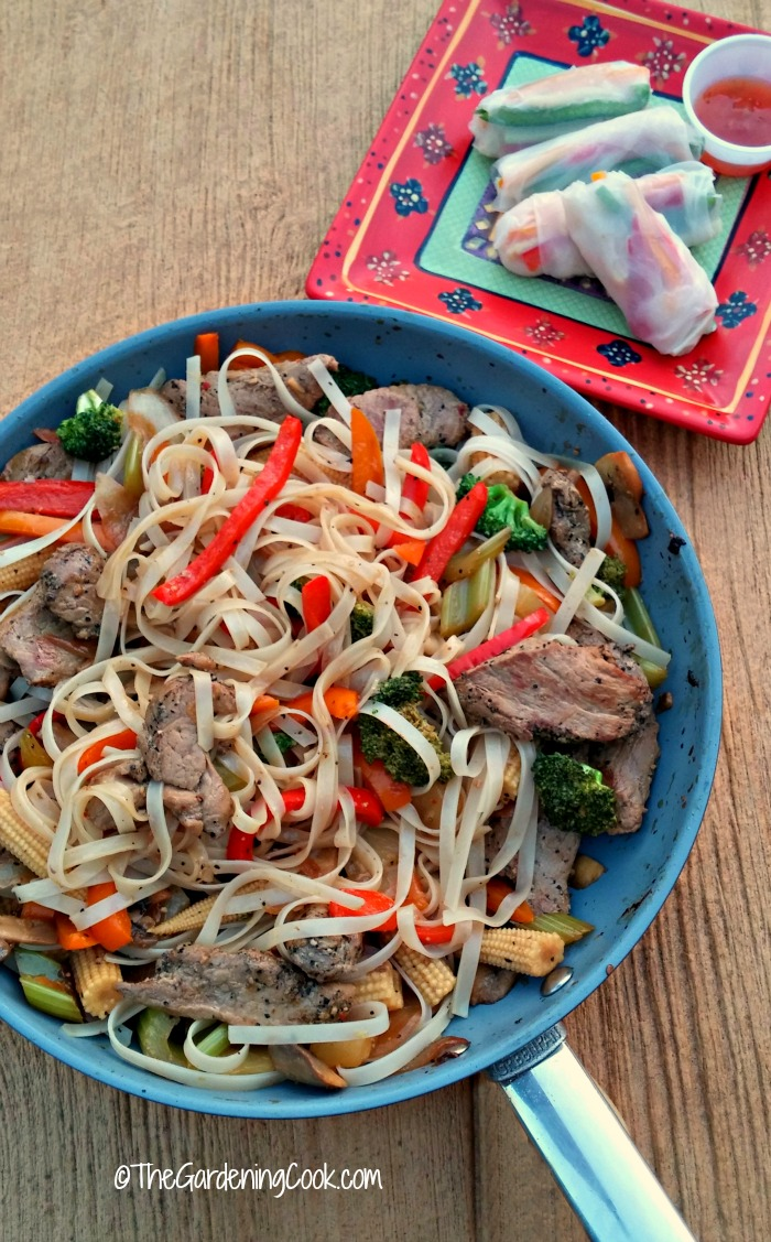Pork stir fry and vegetable spring rolls