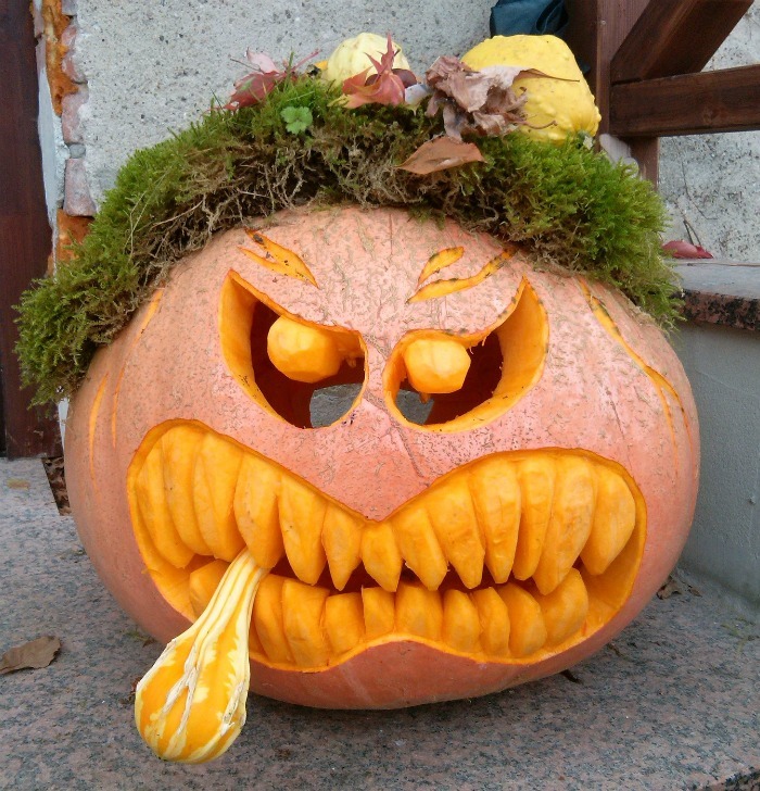 Pumpkin with moss and plants for hair