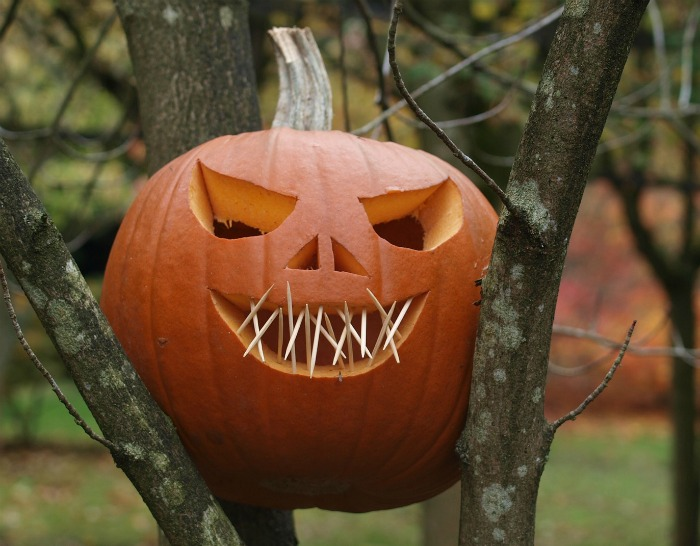 Toothpicks make the mouth of the simply carved pumpkin more spooky