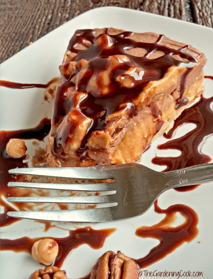 Turtle chocolate pumpkin cheesecake