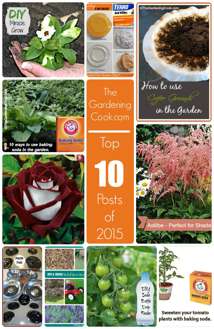 Top 10 Most Popular Posts of 2015. These 10 posts were the most popular ones at thegardeningcook.com. Many of them are helpful tips on how to get the most out of your garden (and your home!)