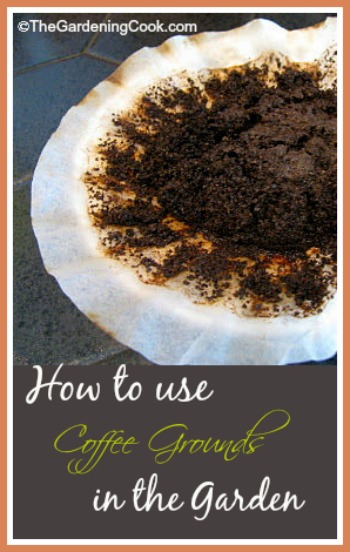 Don't throw those coffee grounds away! Use them in the garden. thegardeningcook.com